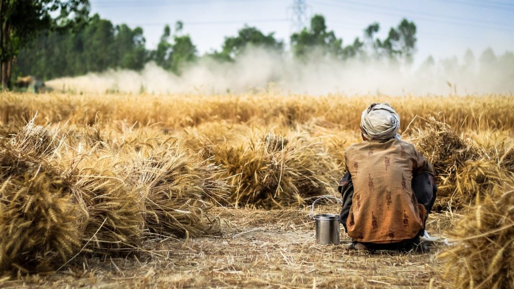KRISHI: If the farmer is poor then so is the whole country